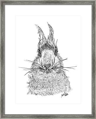 Curieux Framed Print by Hatin Josee