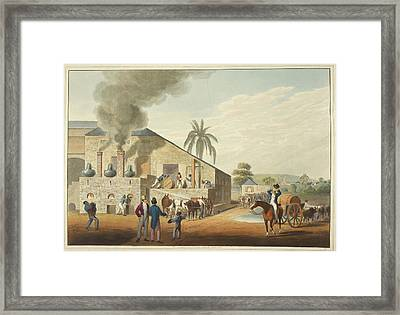 Curing-house And Stills Framed Print by British Library