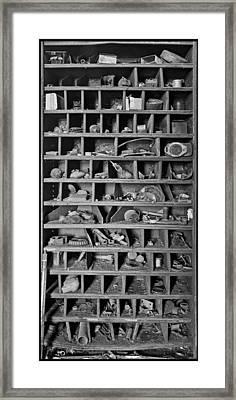 Curiosity Framed Print by Debra and Dave Vanderlaan