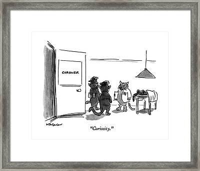 Curiosity Framed Print by James Stevenson