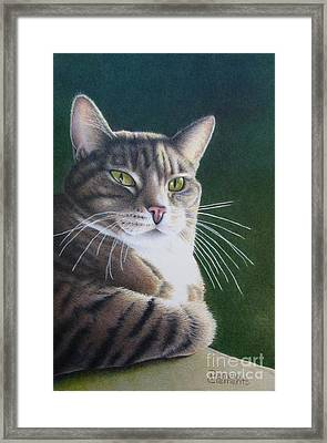 Royalty Framed Print by Pamela Clements