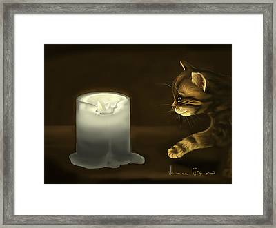 Curious Cat Framed Print by Veronica Minozzi