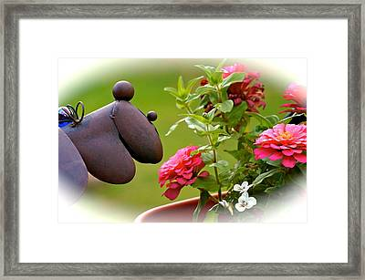 Curious Clifford  Framed Print by Danielle  Broussard