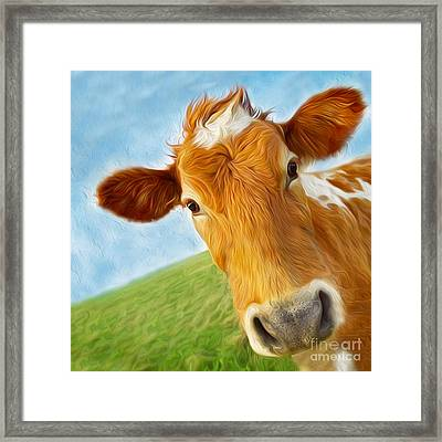 Curious Cow Framed Print by Jo Collins
