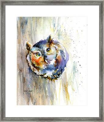 Curious Screech Owl Framed Print by Christy Lemp