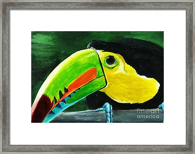 Curious Toucan Framed Print by Laura Charlesworth