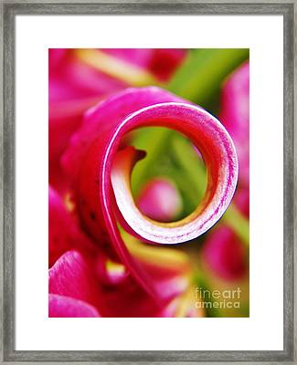 Curl With A Pearl Framed Print