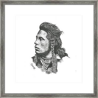 Curley Framed Print