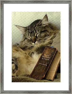 Curling Up With A Good Book Framed Print by Matthew Schwartz