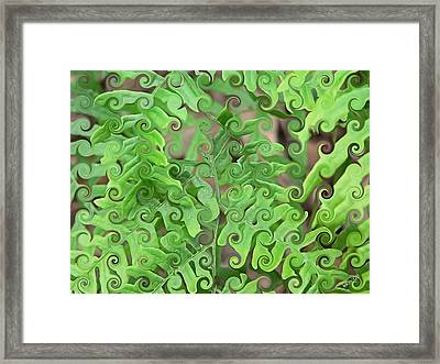Curly Fronds Framed Print