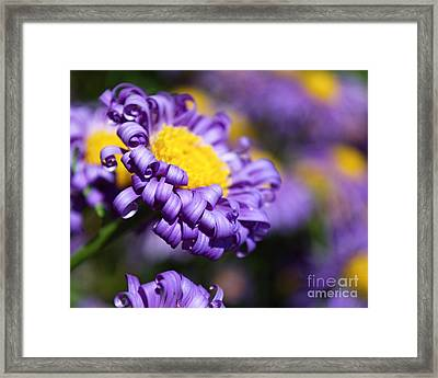 Curly Haired Beauty Framed Print
