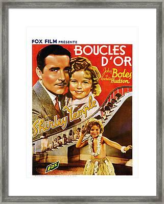 Curly Top, Aka Boucles Dor, Belgian Framed Print by Everett