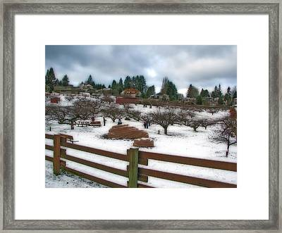 Framed Print featuring the photograph Curran Apple Orchard In Orton by Chris Anderson