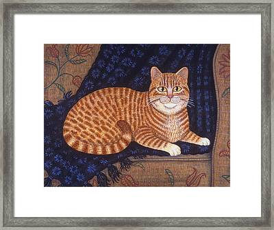 Curry The Cat Framed Print by Linda Mears