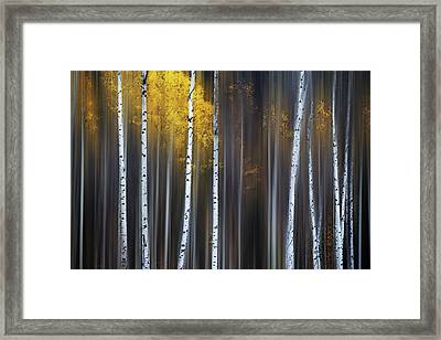 Curtain Of Fall Framed Print
