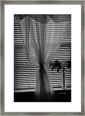 Curtin With Lillies Framed Print by Kenny Francis