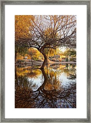 Curved Reflection Framed Print by Kerri Mortenson