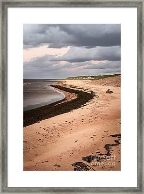 Curves On Beach Framed Print by Elena Elisseeva