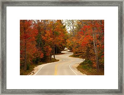 Curvy Fall Framed Print by Adam Romanowicz