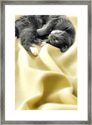 Custom Electric Blanket Framed Print by Diana Angstadt