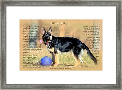 Custom Paw Print Sofie Framed Print by Sue Long