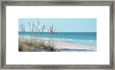 Serene Beach Sea Oats Panoramic Framed Print