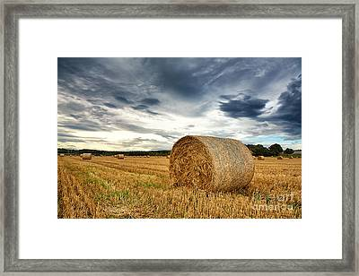 Cut Field Framed Print by Jane Rix