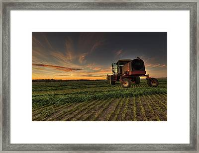 Cut To Dry Framed Print