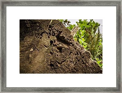 Cut Wood Framed Print