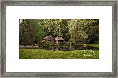 Cuttalossa In Summer II Framed Print by Debra Fedchin