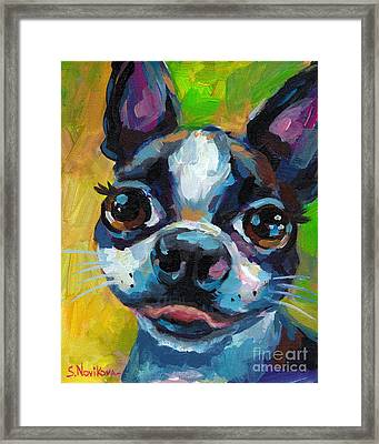 Cute Boston Terrier Puppy Framed Print