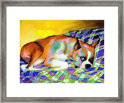 Cute Boxer Dog Portrait Painting Framed Print