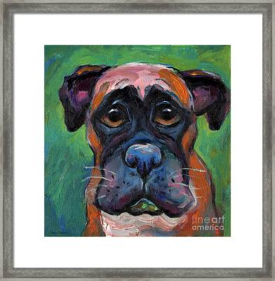 Cute Boxer Puppy Dog With Big Eyes Painting Framed Print by Svetlana Novikova