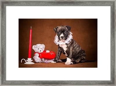Cute Christmas Dog Framed Print by Doc Braham