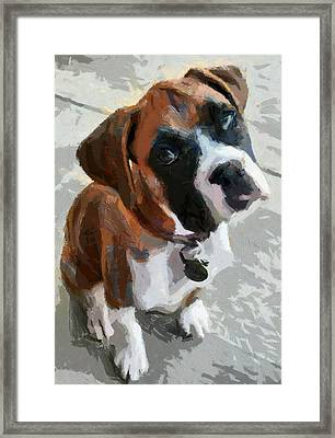 Framed Print featuring the painting Cute Dog by Georgi Dimitrov