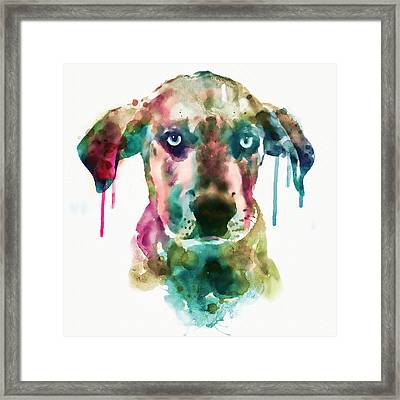 Cute Doggy Framed Print