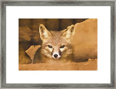 Framed Print featuring the photograph Cute Fox  by Brian Cross