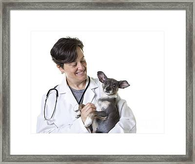 Cute Little Puppy With Vet Framed Print
