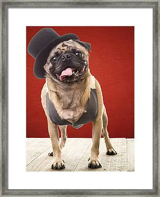 Cute Pug Dog In Vest And Top Hat Framed Print by Edward Fielding