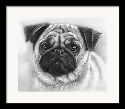 Realistic Pencil Drawings Drawings Framed Prints