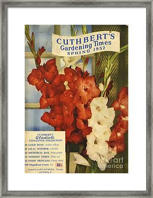 Cuthbert�s Gardening Times 1957 1950s Framed Print
