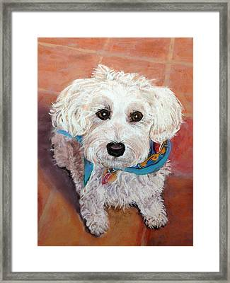 Framed Print featuring the pastel Cutie With Bandana by Julie Maas