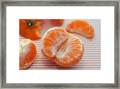 Cuties Framed Print by Marianne Donahoe