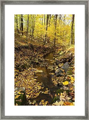 Cuttalossa In Autumn Framed Print