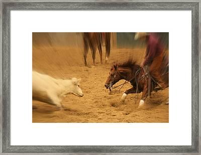 Cutting Horse 8 Framed Print by Lynn Sprowl