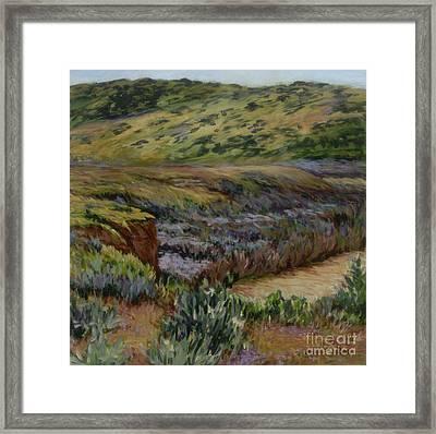 Cuyama Muddy Framed Print by Betsee  Talavera