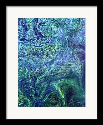 Phytoplankton Framed Prints