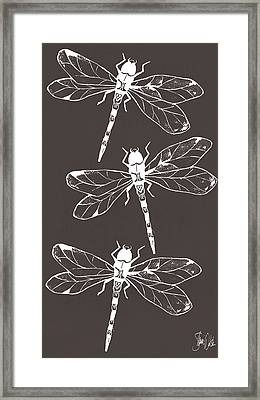 Cyanotype Dragonfly Framed Print by Shanni Welsh
