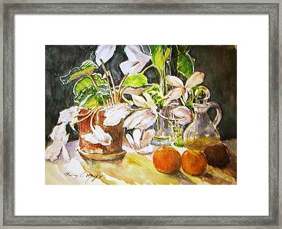 Cyclamen With Tangerines And Kiwi Framed Print by Vivian  Castillo M