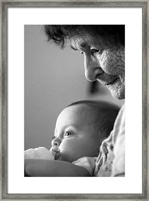 Cycle Of Life Framed Print